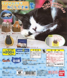 Cat Magnets: Available in Japanese Capsule Toy Machines!